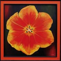 12_orange-rgb.jpg