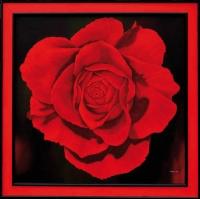 12_red-rgb.jpg